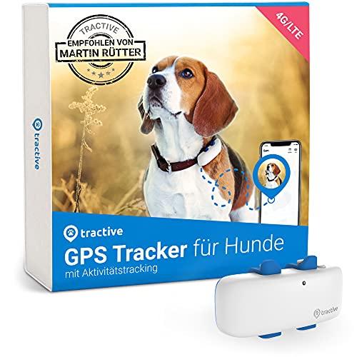 Tractive GPS Tracker für Hunde (2021). Empfohlen von Martin Rütter. Immer wissen, wo dein Hund ist. GPS- & Aktivitätstracking